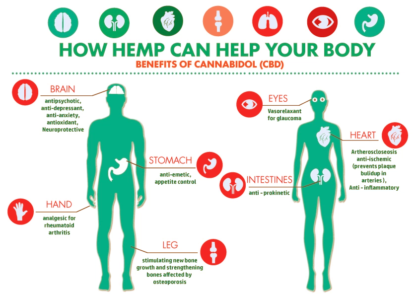 CBD Hemp Oil Facts